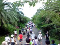 夢の島の熱帯雨林・・・